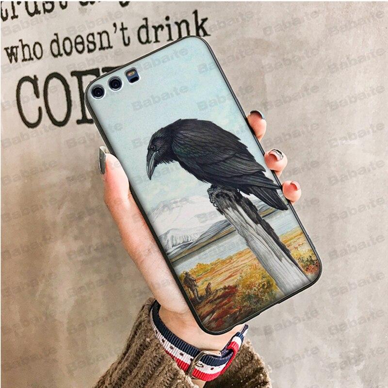 animal crow