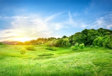 Laeacco Spring Green Grassland Blue Sky Scenic Photography Backgrounds Customized Vinyl Photographic Backdrops For Photo Studio