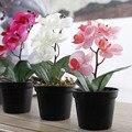 1 PC Mini vaso de Flor Artificial borboleta orquídea De Seda em vasos bonsai Flor para Festa de Casamento Casa Decorativa