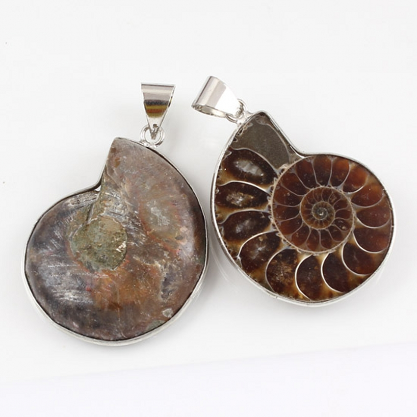 Kraft beads Unique Design Silver Plated Natural Ammonite Reliquiae Pendant Charm Jewelry For Gift in Pendants from Jewelry Accessories