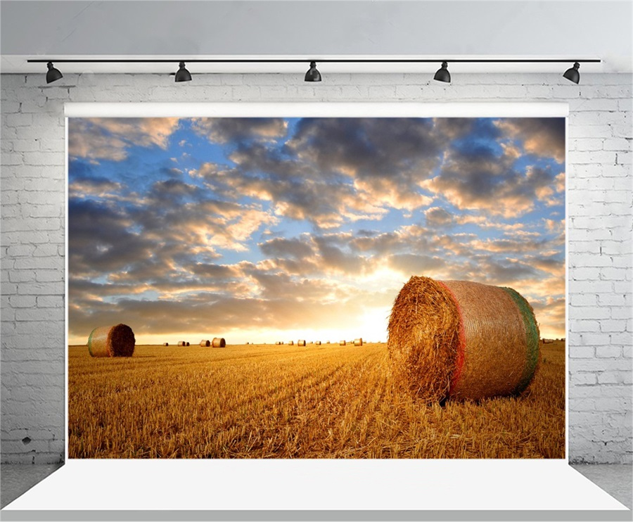 Laeacco Morning Countryside Farm Hay Bale Field Scenery Photography Backgrounds Custom Photographic Backdrops For Photo Studio