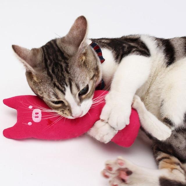 Cuscino sveglio Scratch Crazy Cat Kicker Catnip Giocattolo Digrignare i denti Gi