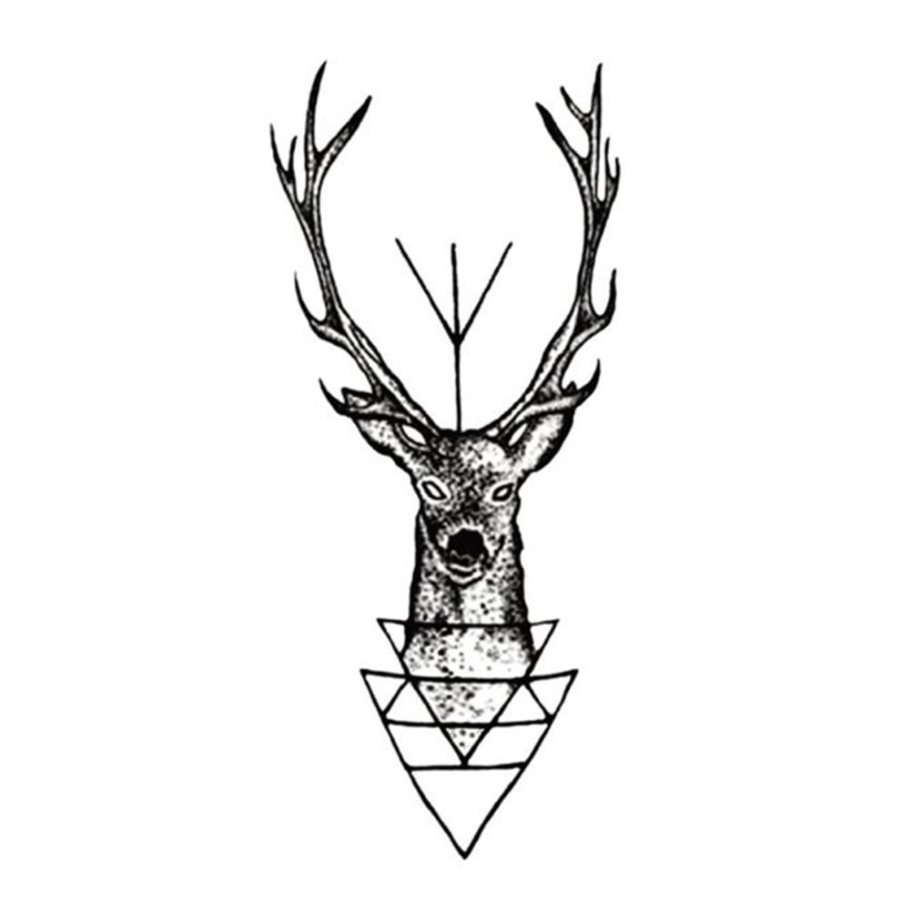 elk horn men Find great deals on ebay for elk horn fern shop with confidence.