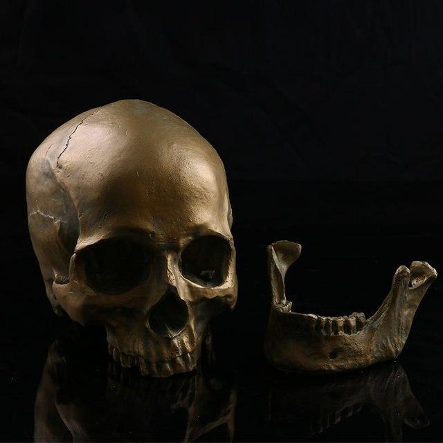 Halloween Items Home Decorations Medicine Teaching Resin Skulls New Hot  Products Bronze Skulls