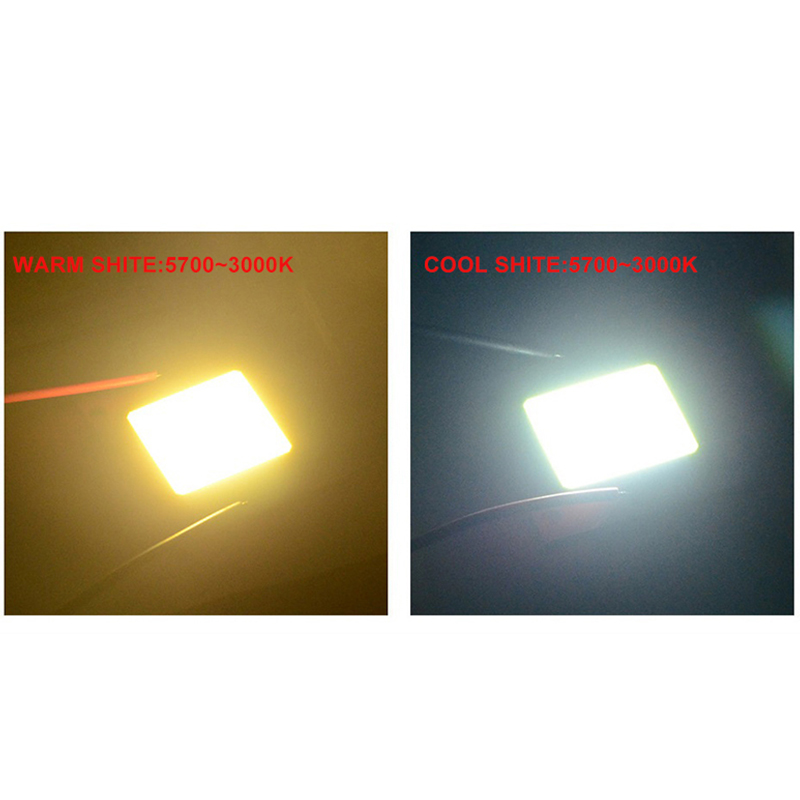 Купить с кэшбэком 1/Psc Hight Puissance LED COB Puce 50 W 100 W 150 W LED Lampe Ampoule 220 V Free Drive Light Source  Puces Smart IC Pour