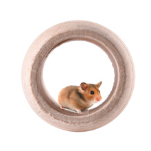 small pet wooden Toys and Barrel for Hamster squirrel Guinea pig Chinchilla ferret rabbit rolling barrel toys accessories