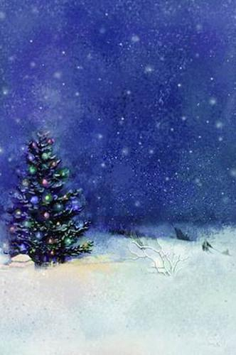 10X20ft Hand painted Muslin scenic photo studio backdrops winter sky ,christmas tree photographic background custom service