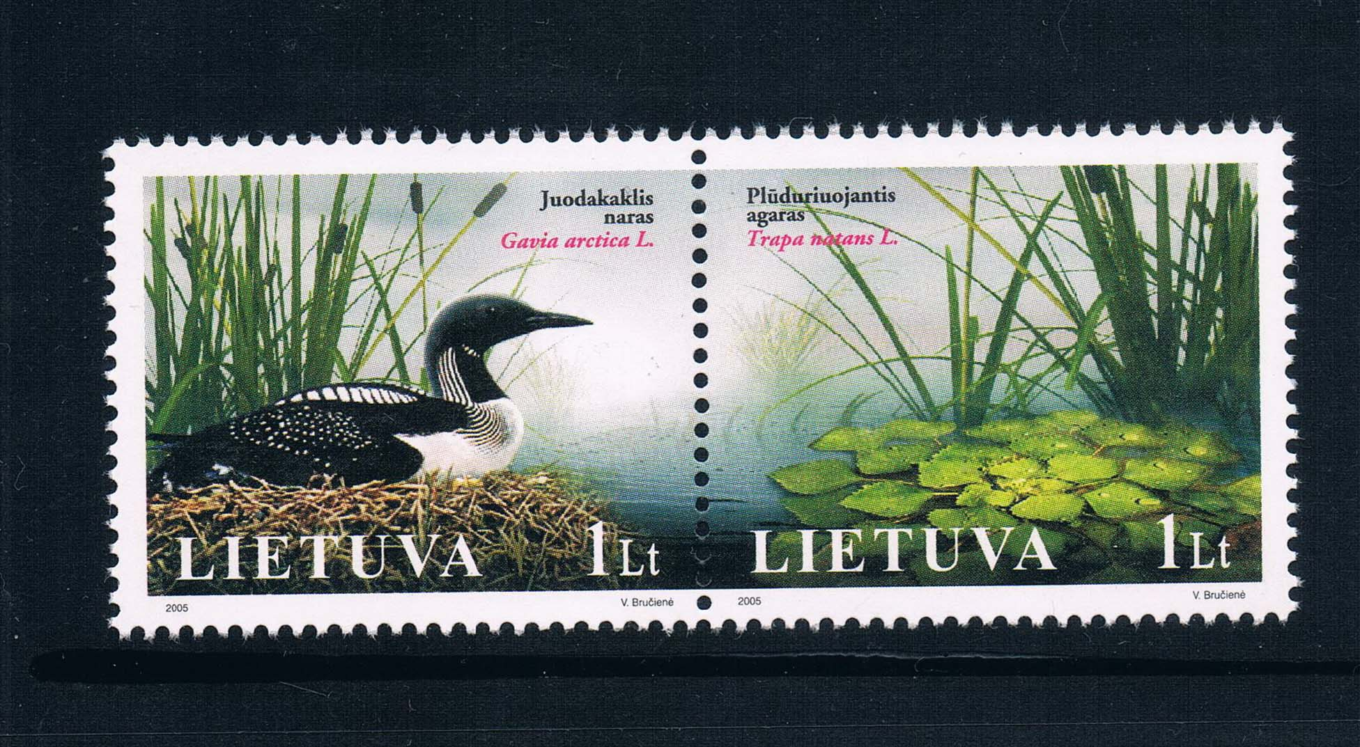 BS0238 Lithuania 2005 wetland bird stamps 2 new 0209 from 2012 ea1420 1ms new 0626 coastal bird stamps