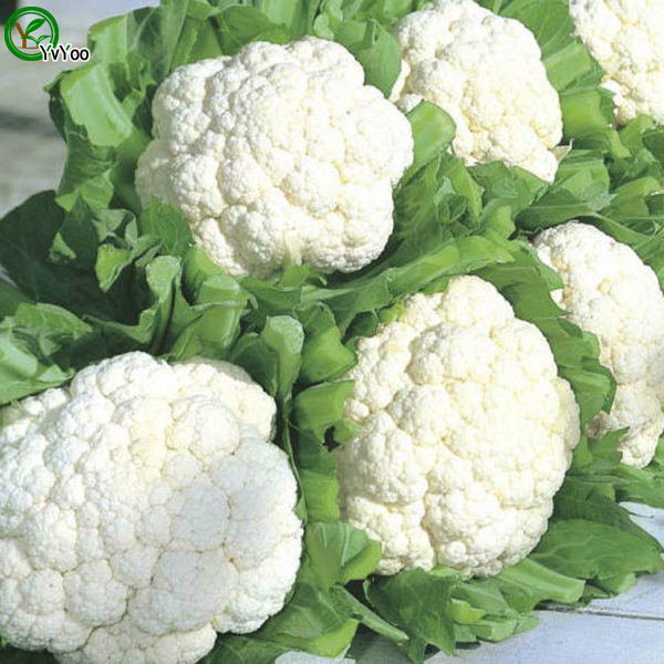 Image result for flower cabbage