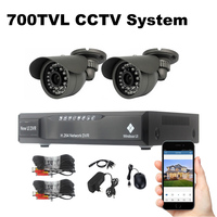 2 Cameras Security System 700TVL Video Surveillance Kit 18m Cable Night Vision Outdoor Waterproof CCTV System