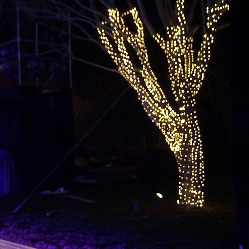 Copper Wire LED Street Garland Light  30m 50m 100m LED Outdoor Christmas Fairy Lights Decoration Christmas Starry Light +Adapter