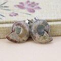 22x28mm Hot sale 1PCS Lovers Natural Abalone seashells sea shells pendants short necklace making jewelry crafts design gifts DIY