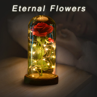 WR Birthday Gift Beauty And The Beast Red Rose W Fallen Petals In A Glass Dome