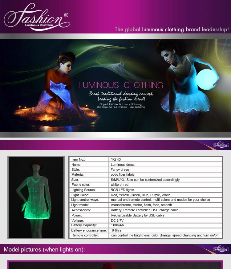 17 fiber optical LED dress women costume luminous clothing Carnival costume luminous dress free shipping 1