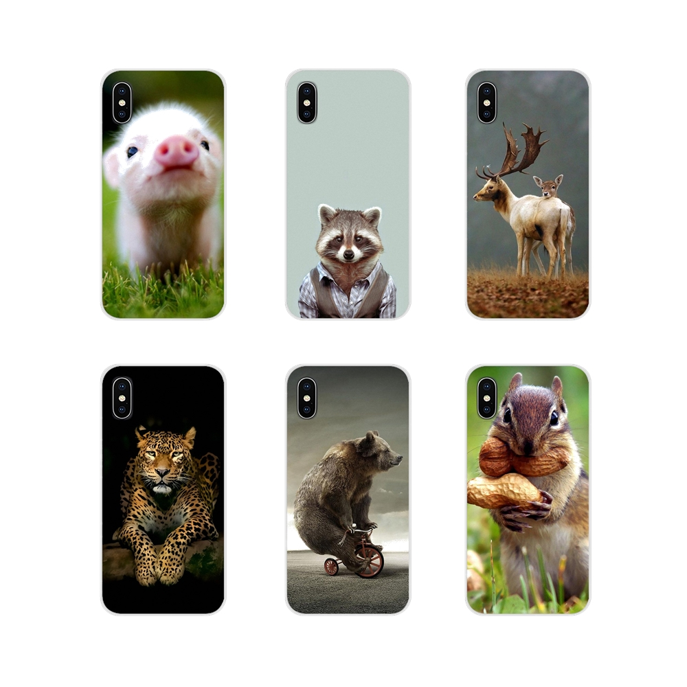 For Apple iPhone X XR XS MAX 4 4S 5 5S 5C SE 6 6S 7 8 Plus ipod touch 5 6 Animals Wallpaper Accessories Phone Shell Covers image