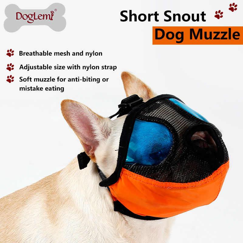 Anjing Peliharaan Profesional Lembut Bernapas Moncong Dengan Biru Transparan Kacamata Untuk Wajah Datar Mulut Hidung Anjing Bulldog Perlengkapan Hewan Peliharaan Aliexpress
