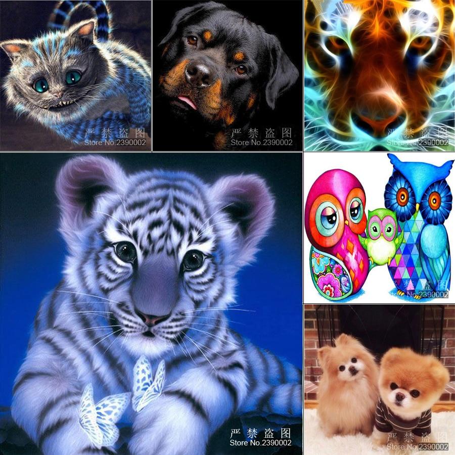 5D diy dimanta gleznošanas dzīvnieki Icon Diamond izšūšanas - Māksla, amatniecība un šūšana