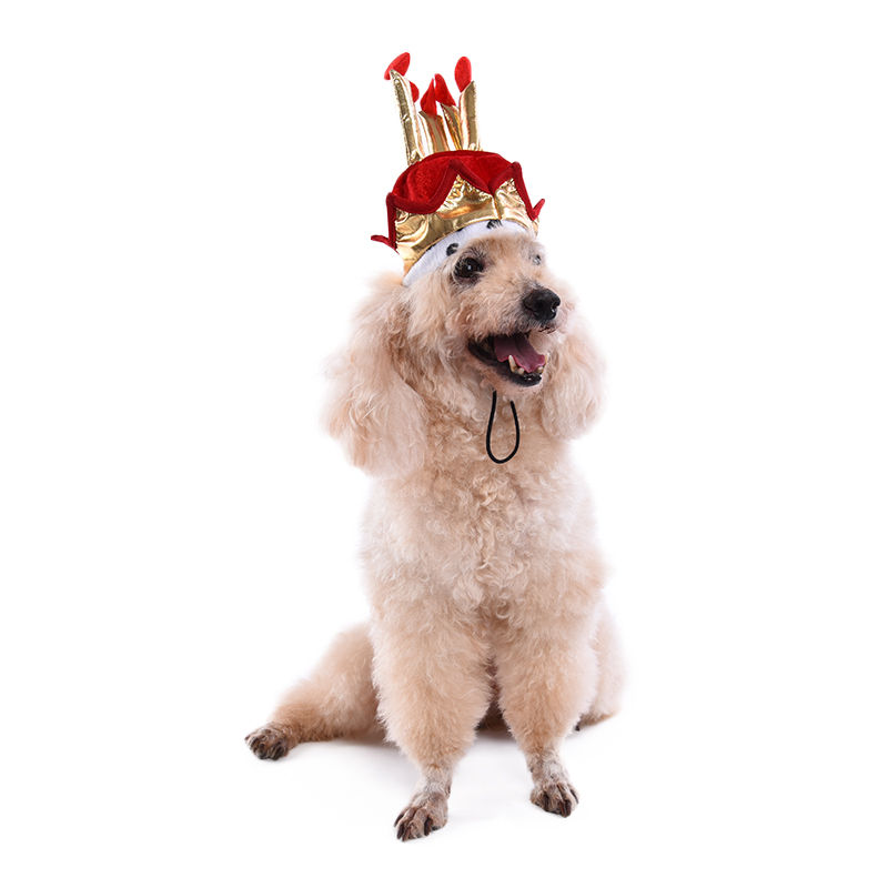 Pet Dog Birthday Hat Supplies Cake Model For Cats Dogs Grooming Accessories In Caps From Home Garden On Aliexpress