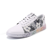 2017 Platform Shoes Woman Graffiti Shoes For Students Lace Up Flats Casual Women Ink Painting Flower