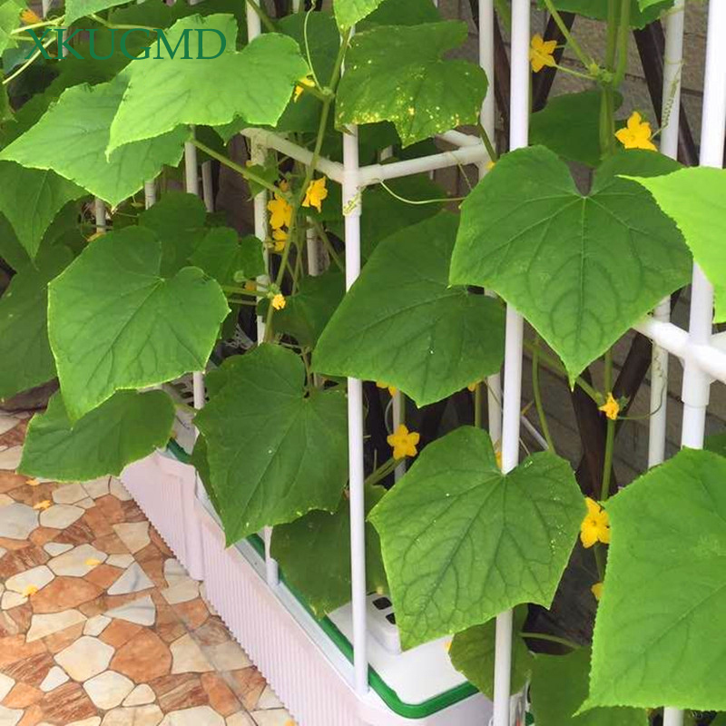 Horticultural Plant Fixed Vine Shelf Ring Bracket Fence Flower Pot Special Flower Stand Soilless Cultivation Planting Bracket