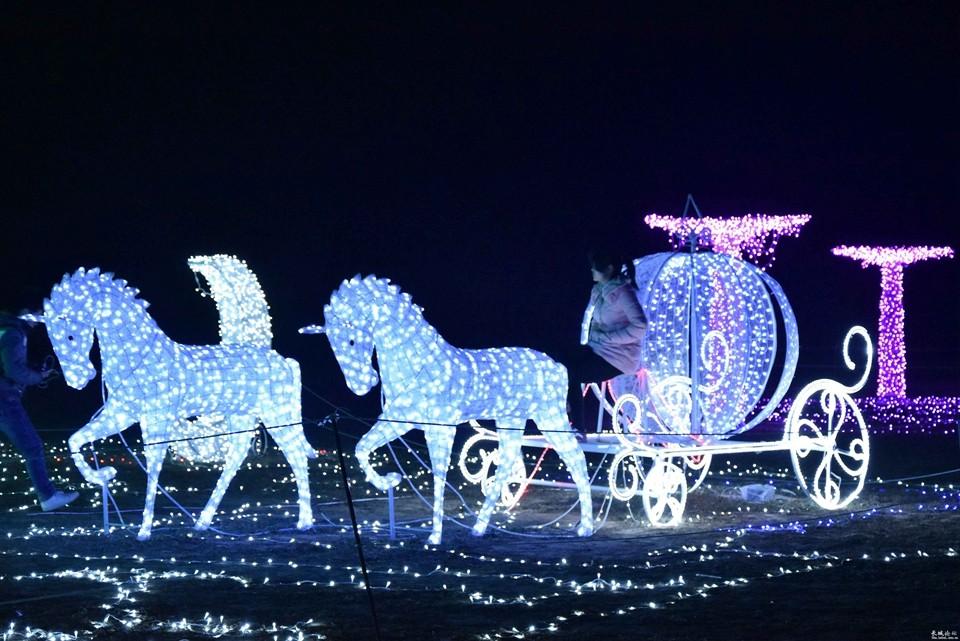 Lighting Strings wedding christmas lights led strings 10m AC220V 110V Led Strip Light Garden Garland  (9)