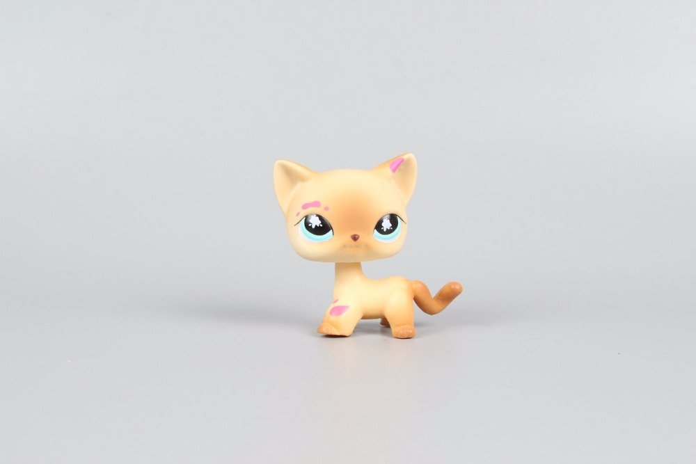 New Pet Collection Figure LPS #816 Messiest Cream & Tan Short Hair Cat Kitty Kids Toys lps pet shop sparkle eyes orange short hair dog collection classic animal pet cat toys action figures kids toys children gift