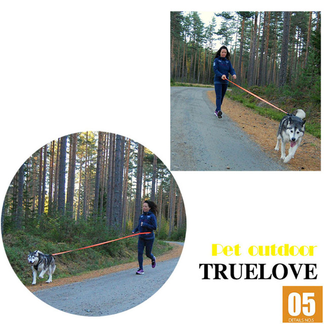 Truelove Dog Running Bungee Leash Hand-held Waistworn Adjustable Nylon Elastic Retractable Dog Leads for Running Jogging Walking