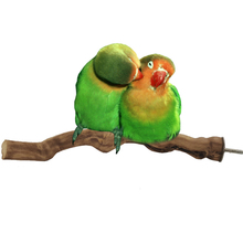 Parrot Bird toy Standing Stick Wild Grape Wood Pole Grinding Claw Bar Stand Pet Habitat Toy cage Accessories