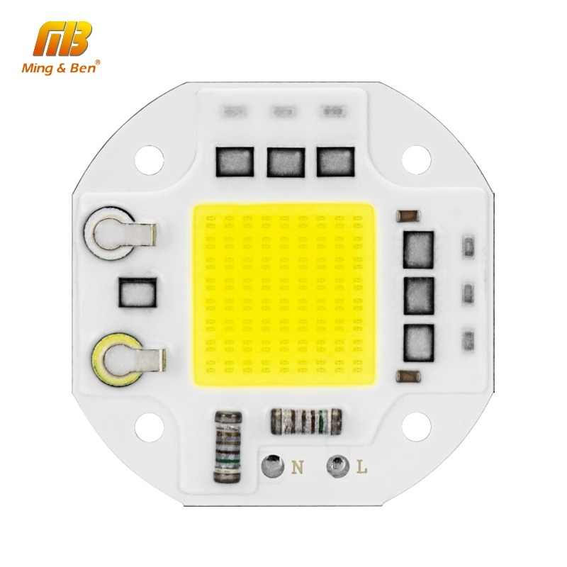 LED COB Chip 20W 30W 50W Surge Prevention Smart IC 220V LED Chip For DIY LED Floodlight Spotlight LED Light Beads No Need Driver