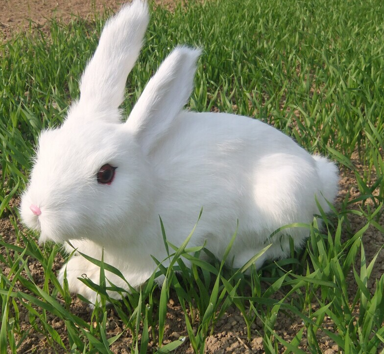 big Simulation white rabbit toy polyethylene&furs lovely rabbit model gift about 34x25cm y0130big Simulation white rabbit toy polyethylene&furs lovely rabbit model gift about 34x25cm y0130
