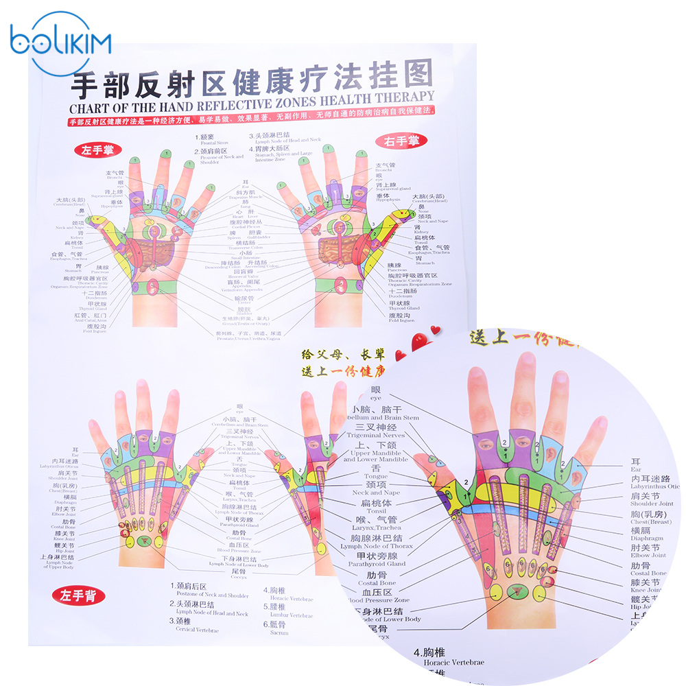 BOLIKIM 6Pcs English Hand&Foot&Ear&body Meridian points of human wall chart female /male acupuncture massage point map flipchart female male urinary human female urinary system model female urinary organ system model human urinary system organ gasen sz021