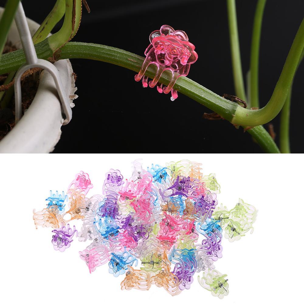 Vine Fix Clip Plant Support Clips Garden Clips Butterfly Shape Durable Light-weight Flower Orchid Stem Clips 60Pcs 100Pcs