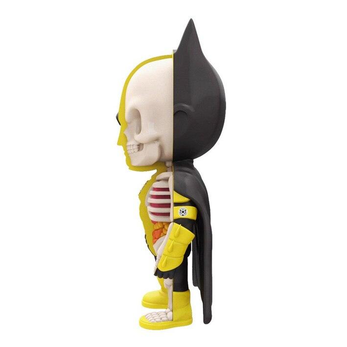 Drôle éducatif 4D bricolage Puzzle jouets pour enfants Cool Skelekon anatomie dessin animé Action FigureXXRAY Batman poupée Figurine-in Jeux d'action et figurines from Jeux et loisirs    3