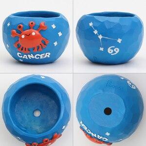 Image 4 - Roogo mini blue 12 horoscopes flowerpot landscape plant bonsai succulent pots desk garden yard decoration best gift items