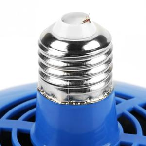 Image 5 - 100 300W Chicken Heating Lamp Animal Warm Light Heater Cultivation Heating Lamp for Pet Chicken Livestock Heat Lamp Lighting