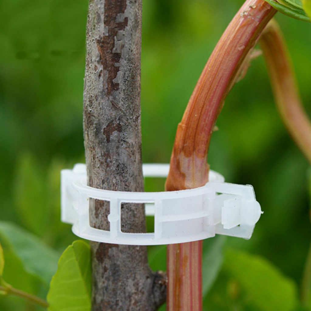 2019 גן צמח גפן עגבניות פלפל תמיכת קליפ פלסטיק תליית חקלאות
