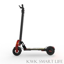 ZUKBOARD City Plus 36V 10.5AH LG Cell Electric Scooter