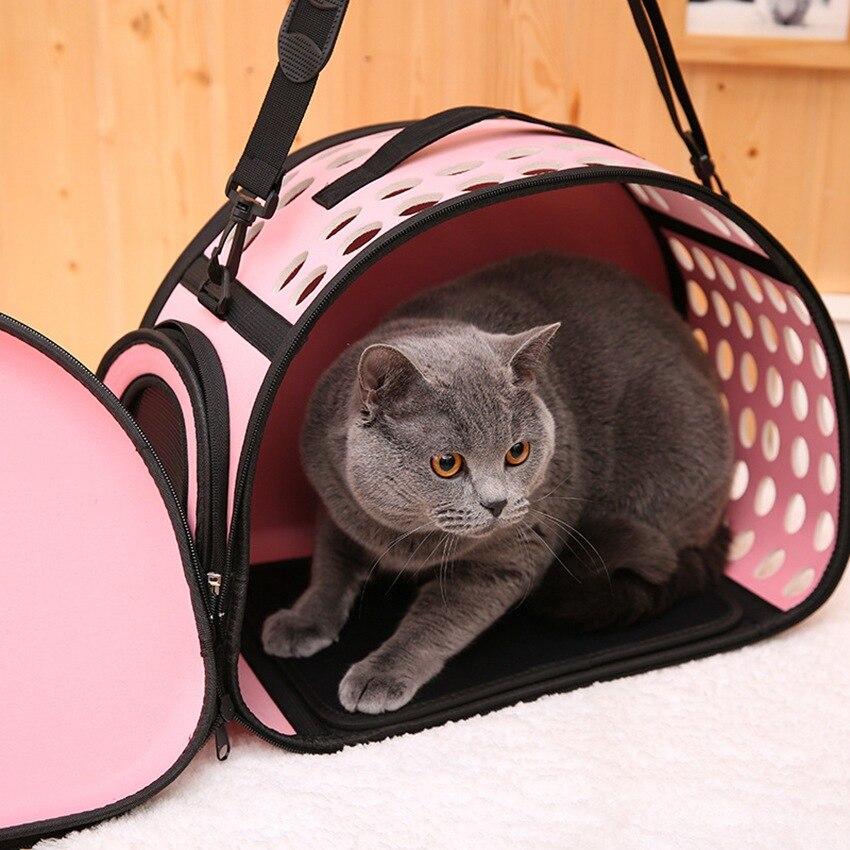 Картинки по клеточкам животные котята заявку