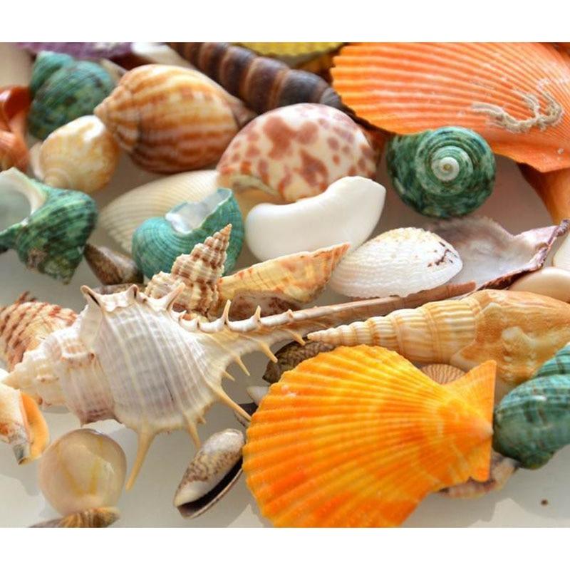 100g sea beach shells mixed fish