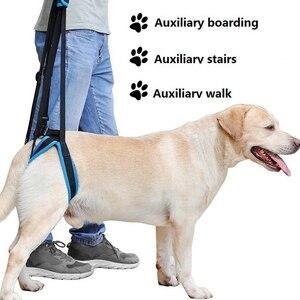 Dog Walking Belt Adjustable Pe