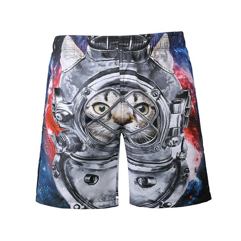 Mens Quick Dry Beach Shorts Panda Donuts Floral Boardshorts Swim Surf Trunks