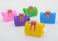 Hot Sale 10Pcs Rubber Molar Shaped Name Card Holder Case Holder Case Display Stand 5 Color