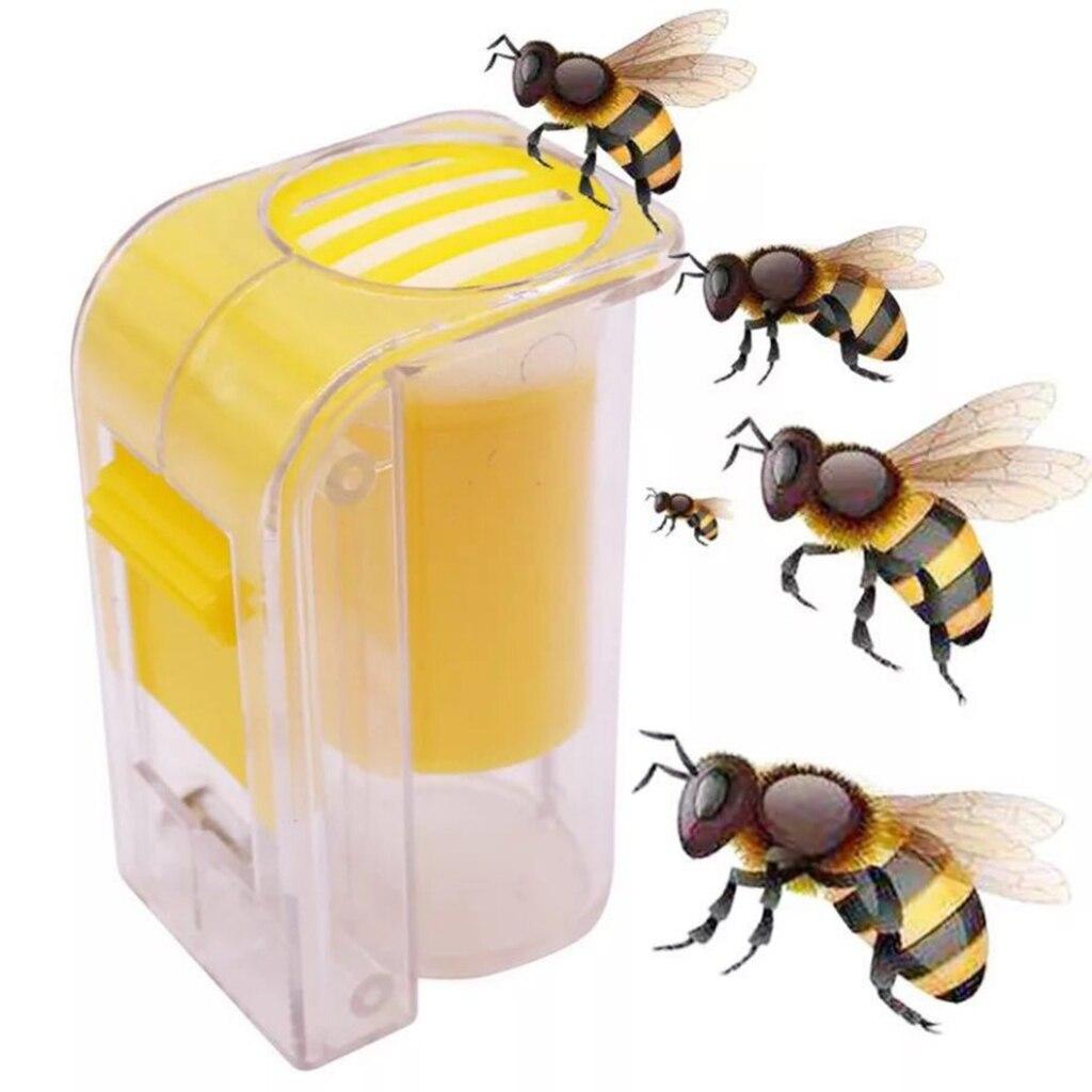 Bee Queen Marking Marker Cage Bottle Plunger push Beekeeping Beekeeper Hot sale
