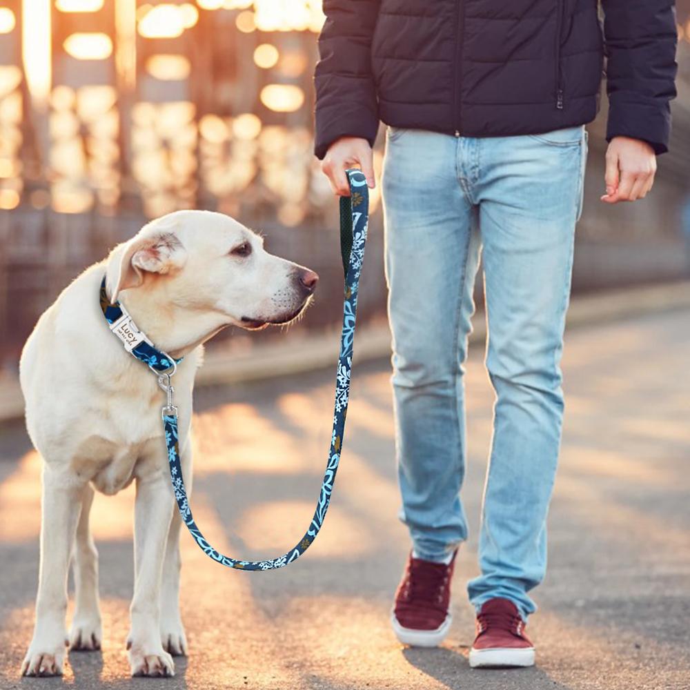 Collar de Nylon personalizado para perros 10
