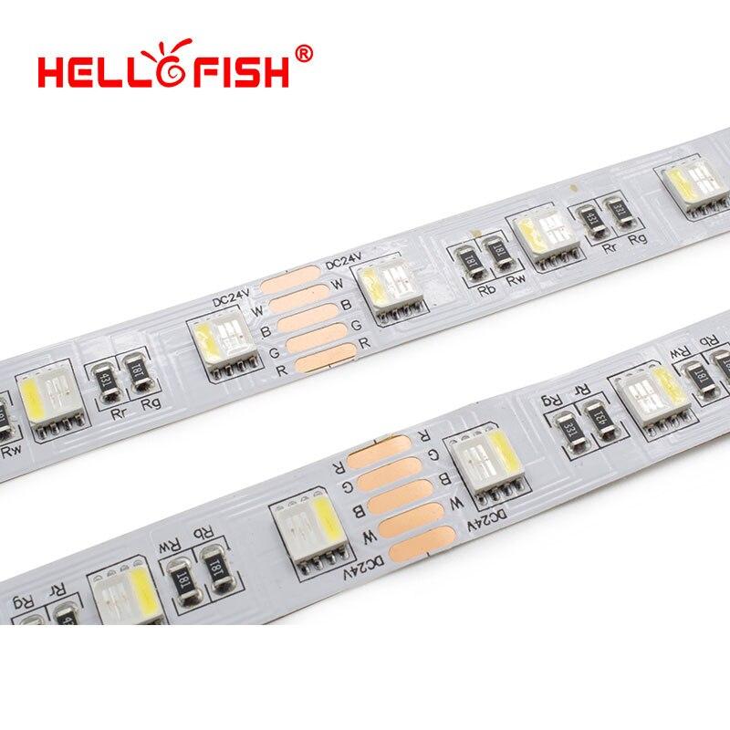 5050-60-RGBW (5)
