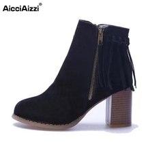 Aicciaizzi женские сапоги до середины икры на молнии с кисточками на высоком каблуке Сапоги и ботинки для девочек женская зимняя обувь Мех теплые Зимние боты женская обувь размер 35-39