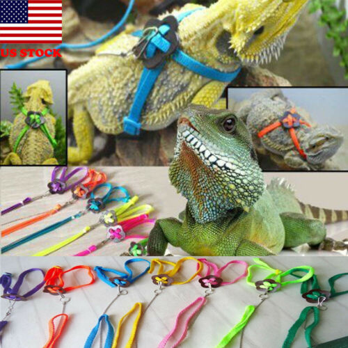 Bearded Dragon Reptile Lizard Gecko Critters Adjustable Harness Leash Keep Rope