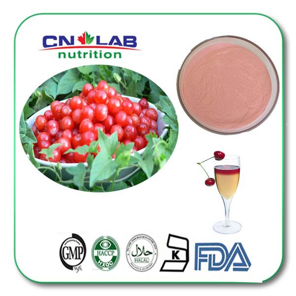 1kg/lot GMP Factory Supply chokeberry plant extract powder supplement manufacturer directly supply 10 1 jerusalem artichoke extract 200g lot