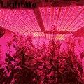 Premium LED Grow Light Bulb 10W Waterproof  For Indoor Plants Miracle Grow Lamp For Hydroponics Organic Soil Mini Greenhouse