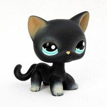 original black short hair cat 994 mini font b pet b font shop lps toys standing